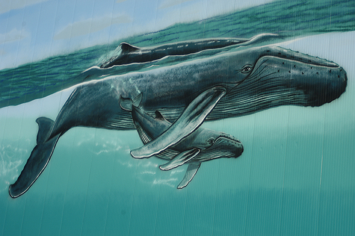 Wyland New Bedford Wall – 'Great Whales of New Bedford'